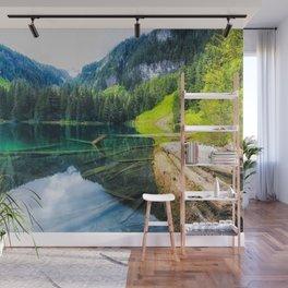 Greenlake Mt. Rainier National Park Wall Mural