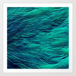 Teal Feathers Art Print