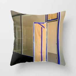 Display Windows For Dummies Throw Pillow