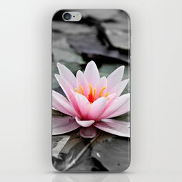 Pink Lotus Flower Waterlily iPhone Skin