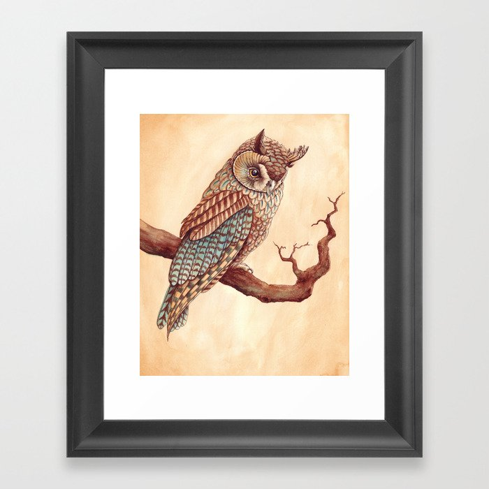 The Long Eared Owl Framed Art Print
