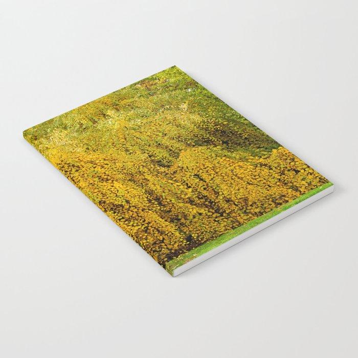 Weeping Tree Notebook
