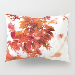 Candied Glasses Pillow Sham