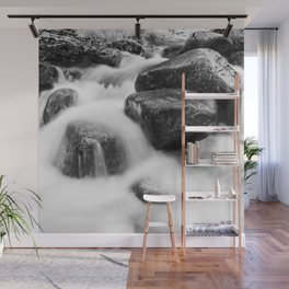 Wild river Wall Mural