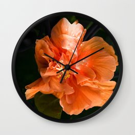 Apricot Hibiscus Wall Clock