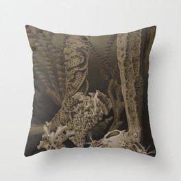 Vintage Sea Sponges Throw Pillow