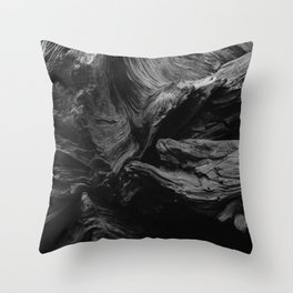 Sequoia National Park XIII Throw Pillow