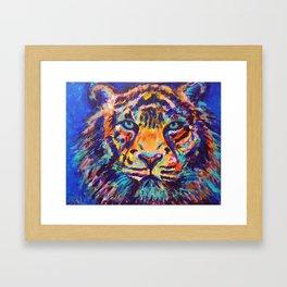 Turquoise-Eyed Tiger Framed Art Print