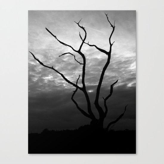 Skyquake Canvas Print