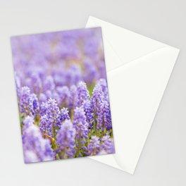 Muscari Magic Stationery Cards