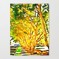 In Oatley, New South Wales Canvas Print