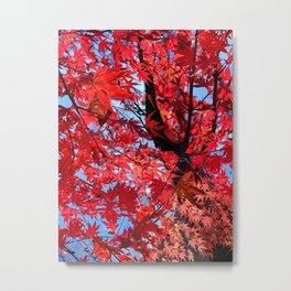 Autumn Leaves 2015 Metal Print