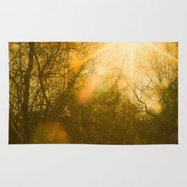 Golden Yellow Autumn Sunlight Rug