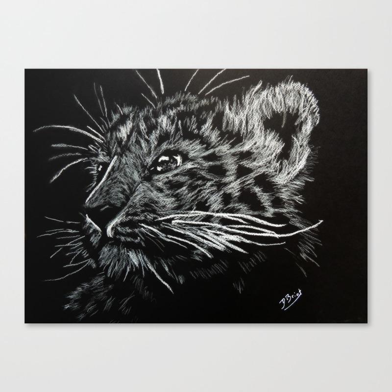 Lion Cub Canvas Print by Davidbriot CNV8097278
