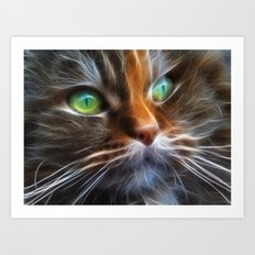 Persian Kitty Art Print