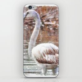 Flamingo Feathers Watercolor iPhone Skin