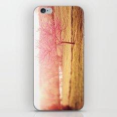 Pink Love iPhone & iPod Skin