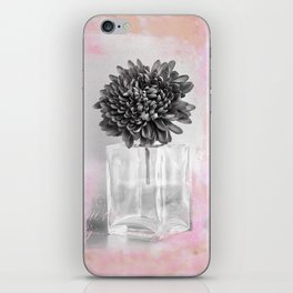 VINTAGE GERBERA iPhone Skin