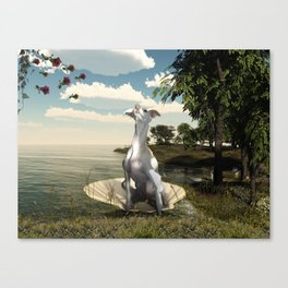 The birth of a greyhound Canvas Print