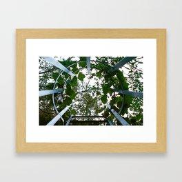 Urban Vines Framed Art Print