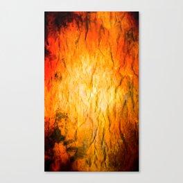 Explo Canvas Print