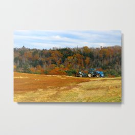 Blueberry Farm Foliage Metal Print