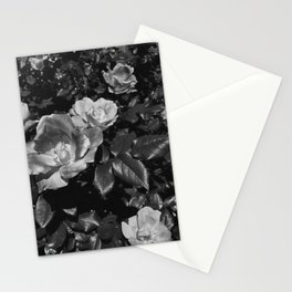Matted Roses Stationery Cards