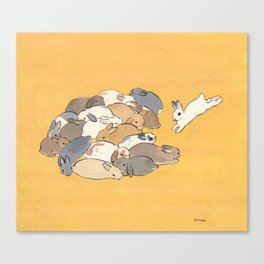 Rabbit Stack Canvas Print