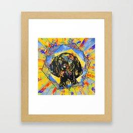 Vizsla  - Hungarian pointer Framed Art Print