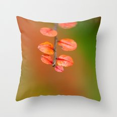 Cotoneaster leaves 9390 Throw Pillow