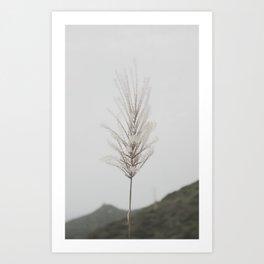 [ - ] Art Print