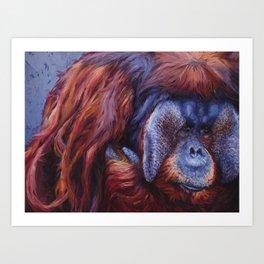 Rudi Art Print