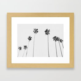 Black & White Palms Gerahmter Kunstdruck