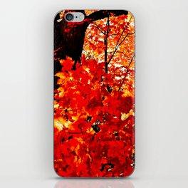 Fiery Autumn iPhone Skin