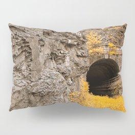 Paw Paw Tunnel - Golden Age Nostalgia Pillow Sham