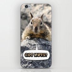 Got Nuts? iPhone & iPod Skin