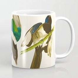 Magpie Vintage Scientific Bird Illustration Coffee Mug