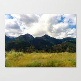 Untitled 14.  Canvas Print