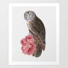 The owl of love Art Print