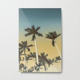 Palms and clear skies Metal Print