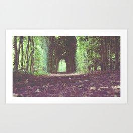 Green Passage Art Print