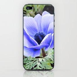 Purple Poppy Anemone I iPhone Skin
