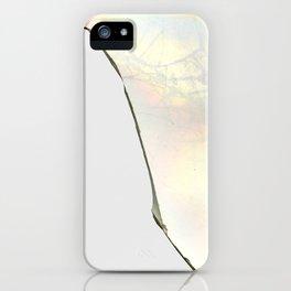 Broken Plate iPhone Case