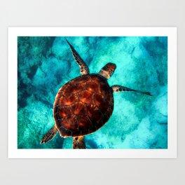 Marine sea fish animal Art Print