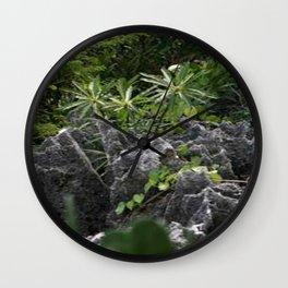 Cayman Plants Wall Clock