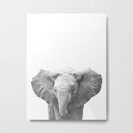 Black and White Baby Elephant Metal Print