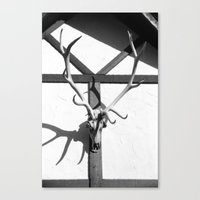antlers Canvas Prints featuring Antlers by Tiffany Dawn Smith