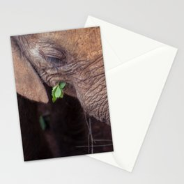 Solemn Moments Stationery Cards