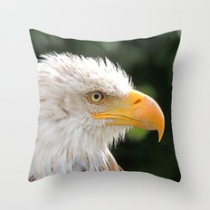 MM - Bald eagle in profile Throw Pillow