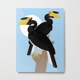 Malabar pied hornbills Metal Print